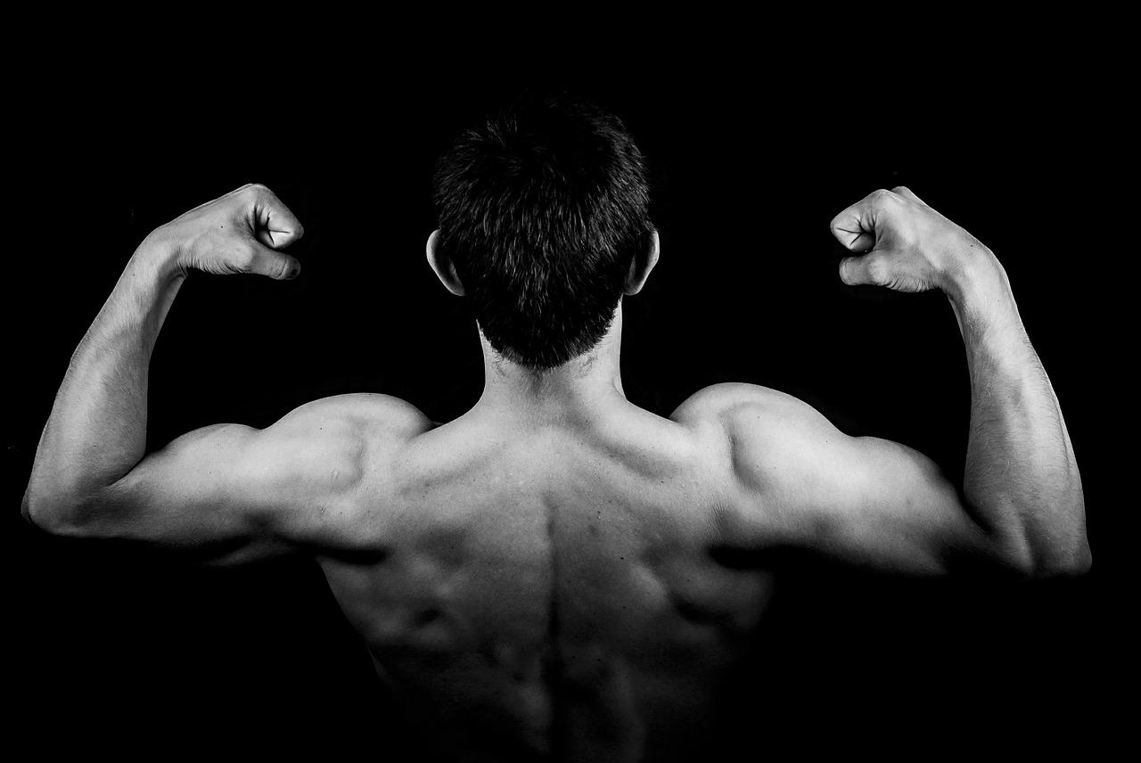 Dicas e Exercícios Para Tonificar Os Bíceps