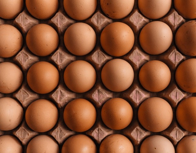 Dieta da Proteína – Como Funciona e Como Colocar em Prática