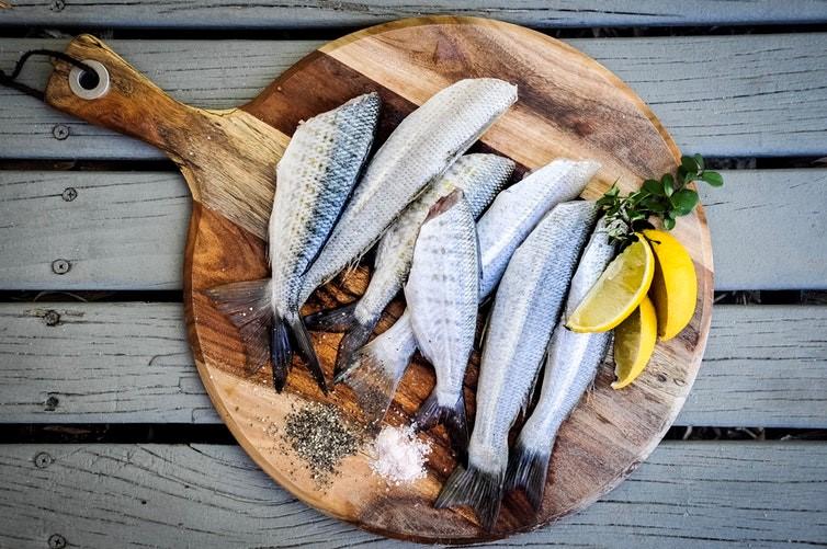 Quais os benefícios da dieta da proteína.