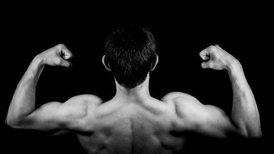 Saiba Quais São Os Melhores Exercícios Para Crescer O Tríceps