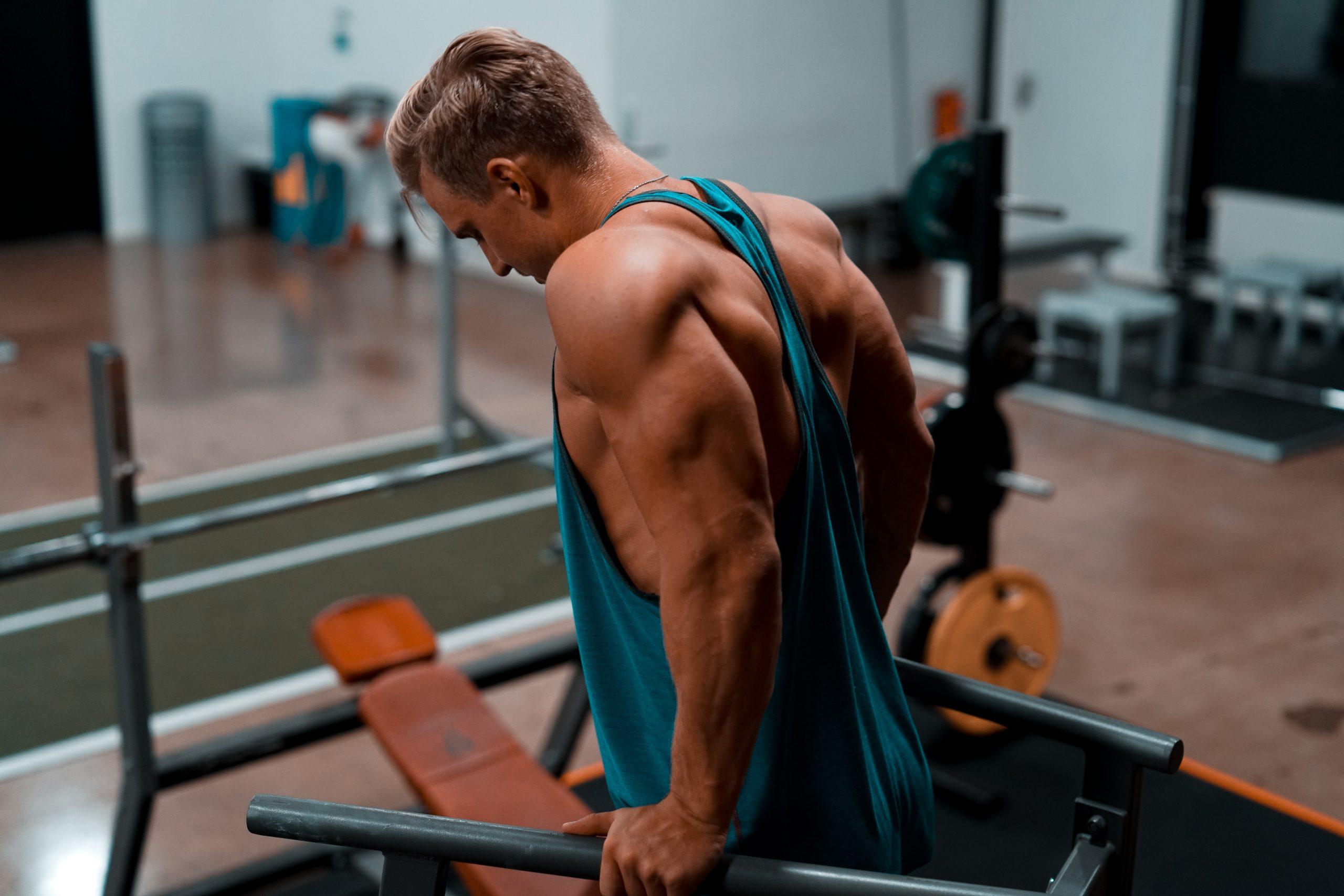treino-de-triceps